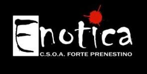 ENOTICA-2012-295x150
